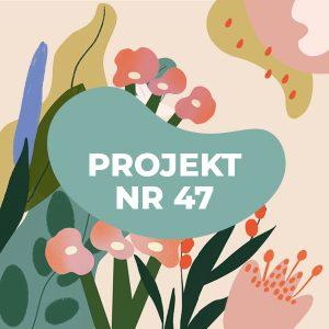 projekt nr 47 remont ul bolkowskiej